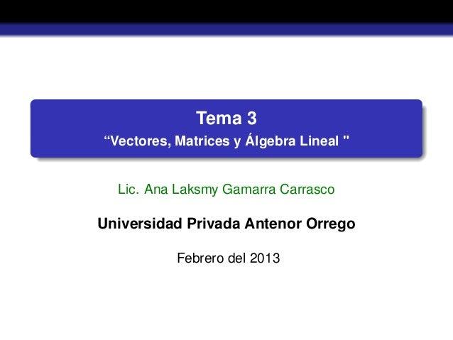 """Tema 3""""Vectores, Matrices y Álgebra Lineal """"Lic. Ana Laksmy Gamarra CarrascoUniversidad Privada Antenor OrregoFebrero del ..."""