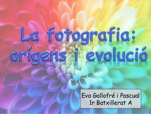 Eva Gallofré i Pascual 1r Batxillerat A