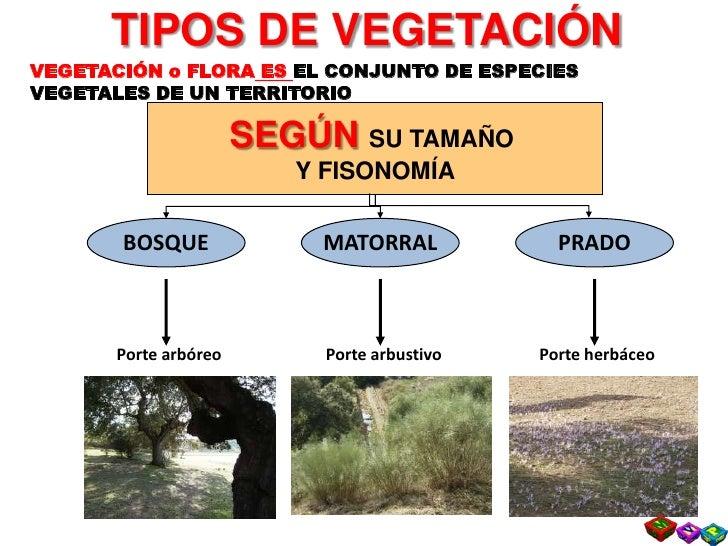 Tema 3  Diversidad HíDrica Y Biogeografica Ii Slide 2