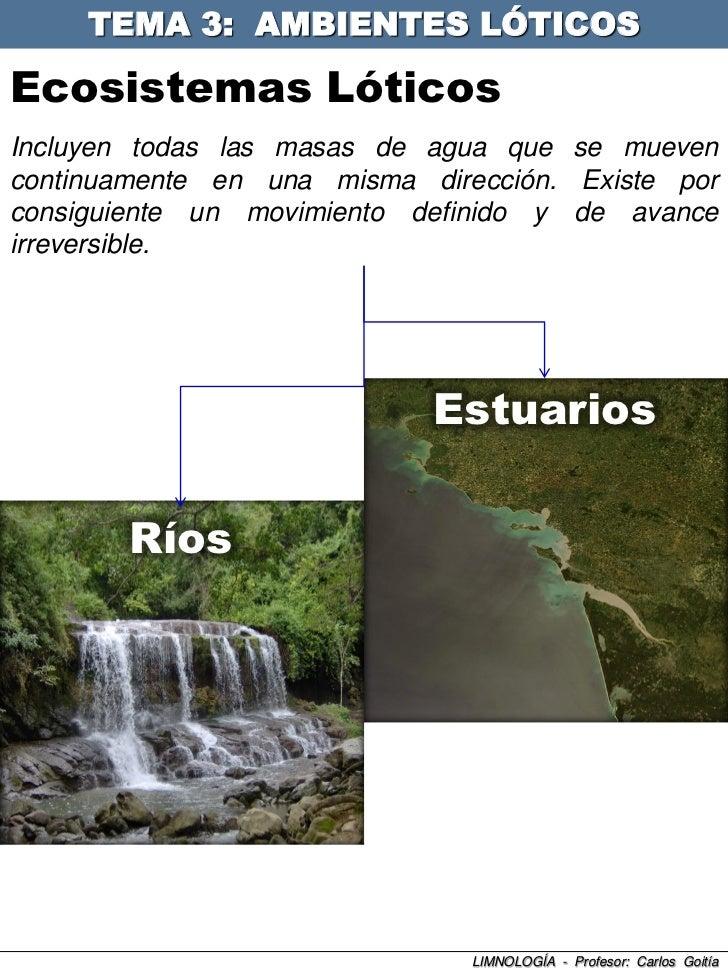 TEMA 3: AMBIENTES LÓTICOS  Ecosistemas Lóticos Incluyen todas las masas de agua que se mueven continuamente en una misma d...