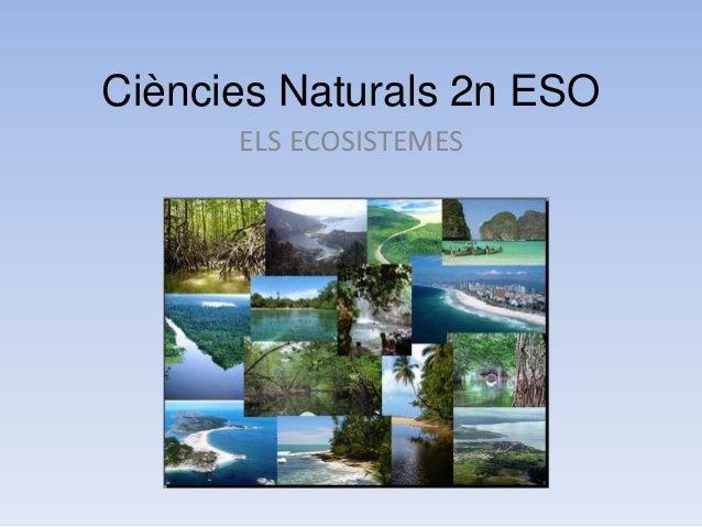 Ciències Naturals 2n ESO ELS ECOSISTEMES