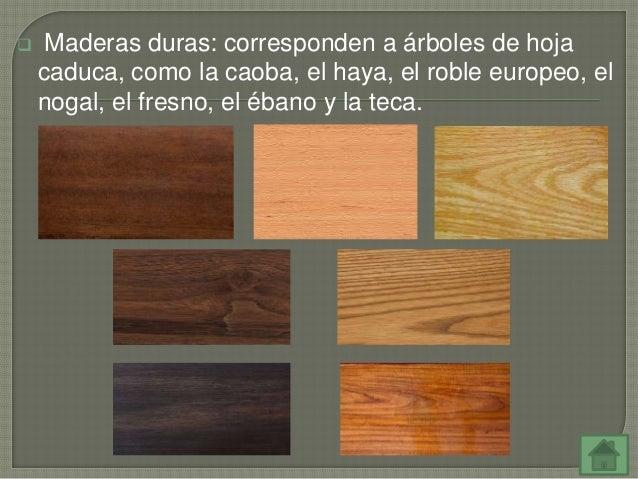 Tecnolog a 1 eso tema 3 materiales y madera ies for Diferencia entre arboles de hoja caduca y hoja perenne