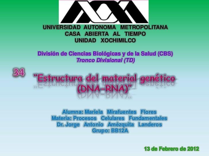 UNIVERSIDAD AUTONOMA METROPOLITANA       CASA ABIERTA AL TIEMPO           UNIDAD XOCHIMILCODivisión de Ciencias Biológicas...