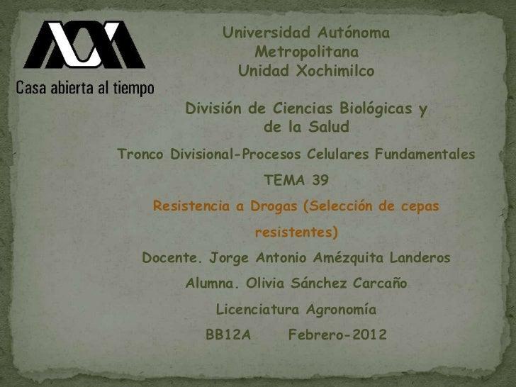 Universidad Autónoma                  Metropolitana               Unidad Xochimilco         División de Ciencias Biológica...