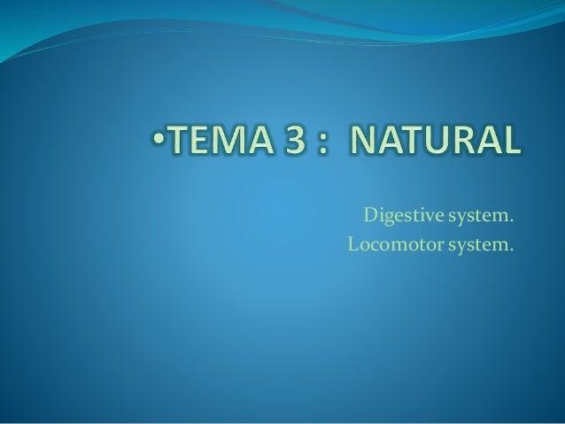 Digestive system. Locomotor system.
