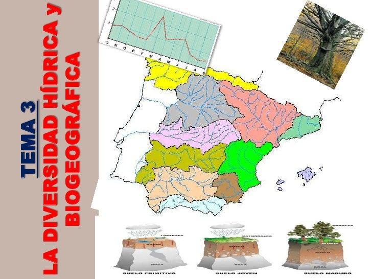 TEMA 3<br />LA DIVERSIDAD HÍDRICA y BIOGEOGRÁFICA<br />