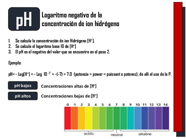 EQUILIBRIO ACIDO BASE Slide 3