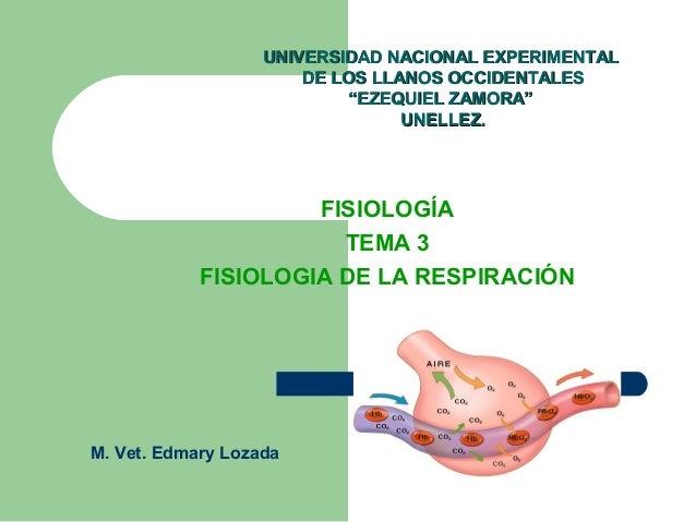 FISIOLOGÍA TEMA 3 FISIOLOGIA DE LA RESPIRACIÓN UNIVERSIDAD NACIONAL EXPERIMENTALUNIVERSIDAD NACIONAL EXPERIMENTAL DE LOS L...