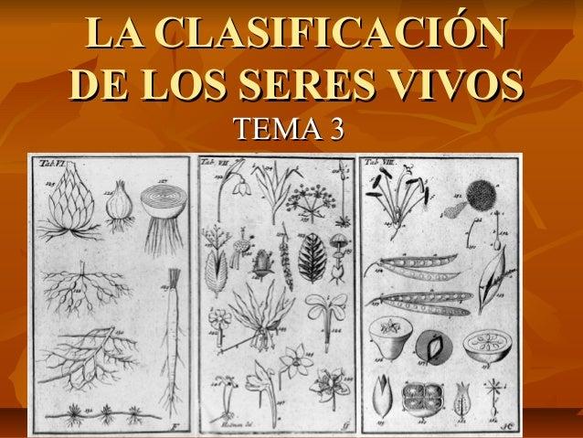 LA CLASIFICACIÓNLA CLASIFICACIÓN DE LOS SERES VIVOSDE LOS SERES VIVOS TEMA 3TEMA 3