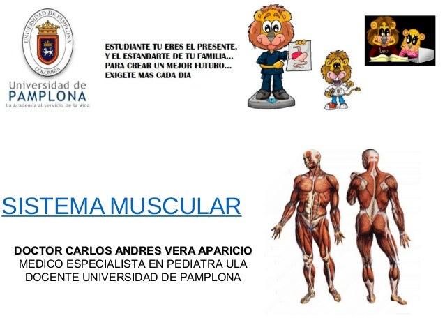 SISTEMA MUSCULAR DOCTOR CARLOS ANDRES VERA APARICIODOCTOR CARLOS ANDRES VERA APARICIO MEDICO ESPECIALISTA EN PEDIATRA ULA ...