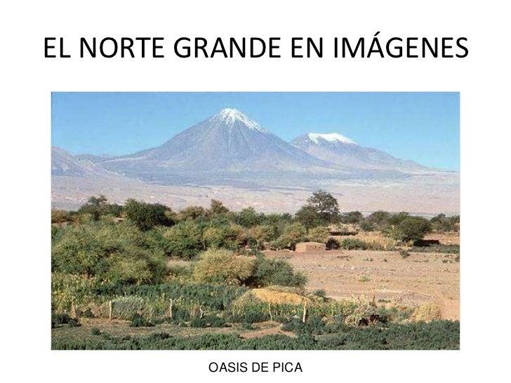 OASIS DE PICA<br />EL NORTE GRANDE EN IMÁGENES<br />