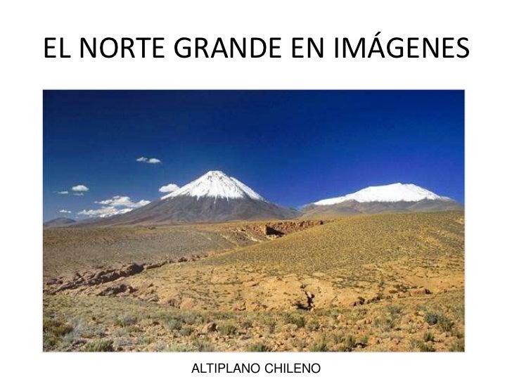 EL NORTE GRANDE EN IMÁGENES<br />ALTIPLANO CHILENO<br />