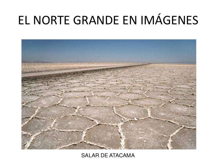 EL NORTE GRANDE EN IMÁGENES<br />SALAR DE ATACAMA<br />