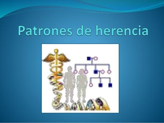 Alelo dominante: Es el alelo que puede expresarse tanto en condiciones de heterocigoto como de homocigoto. Alelo recesivo:...