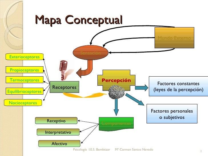 Mapa Conceptual Psicología  I.E.S. Bembézar  Mª Carmen Santos Nevado Mundo Externo Sensación Receptores Exterioceptores Te...