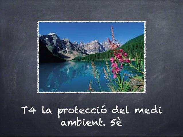 T4 la protecció del medi       ambient. 5è