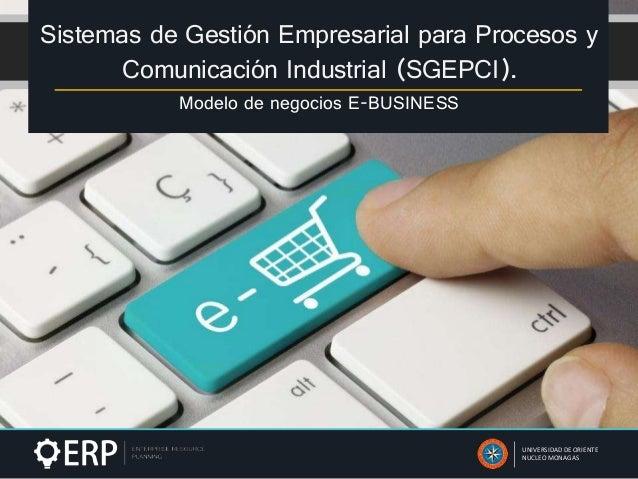 Sistemas de Gestión Empresarial para Procesos y Comunicación Industrial (SGEPCI). Modelo de negocios E-BUSINESS UNIVERSIDA...