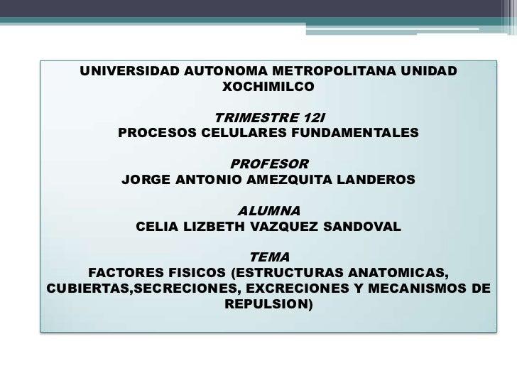 UNIVERSIDAD AUTONOMA METROPOLITANA UNIDAD                   XOCHIMILCO                  TRIMESTRE 12I        PROCESOS CELU...