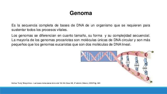 Genoma Procariota 1) Tamaño del genoma: Contiene unas 4.6 Mb (megabases) que codifican alrededor de 4300 genes (en E. coli...