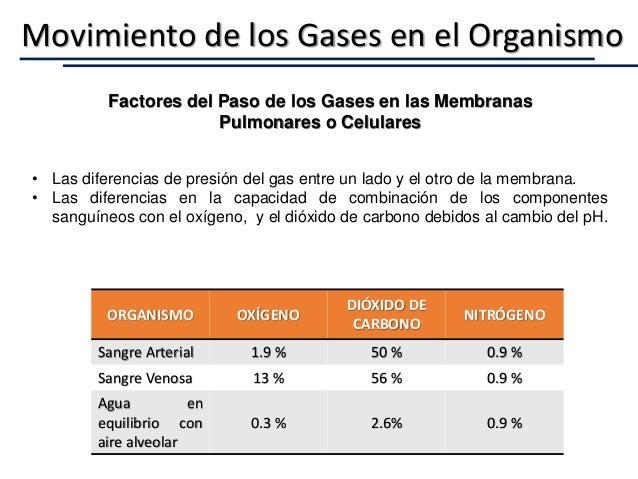 Movimiento de los Gases en el Organismo ORGANISMO OXÍGENO DIÓXIDO DE CARBONO NITRÓGENO Sangre Arterial 1.9 % 50 % 0.9 % Sa...