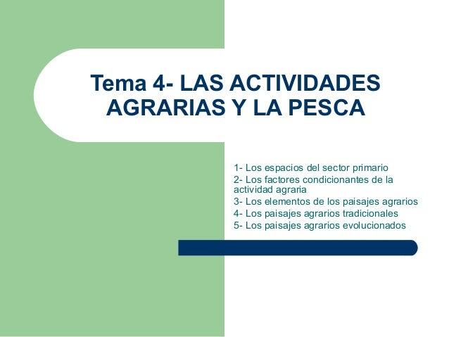 Tema 4- LAS ACTIVIDADES AGRARIAS Y LA PESCA 1- Los espacios del sector primario 2- Los factores condicionantes de la activ...