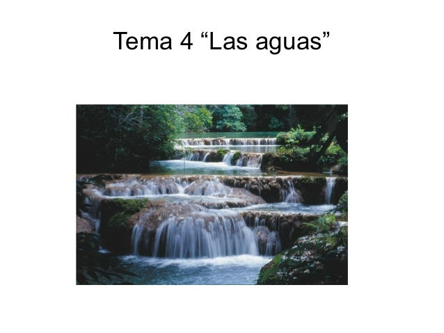 "Tema 4 ""Las aguas"""