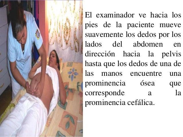 image Examen ginecológico de la embarazada