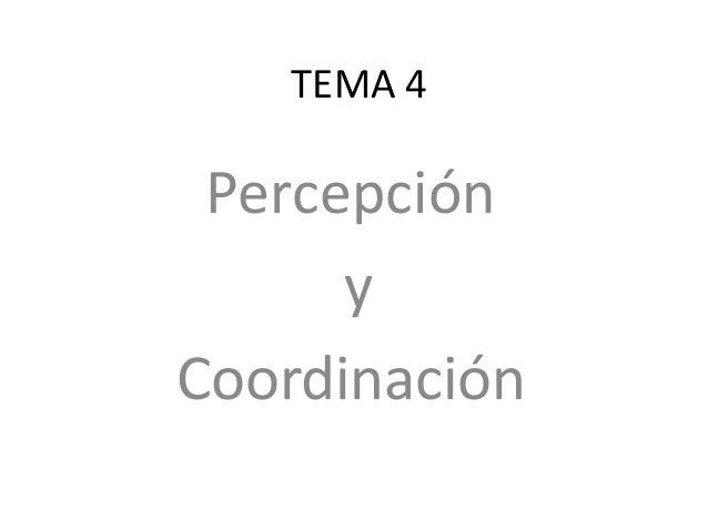TEMA 4 Percepción y Coordinación