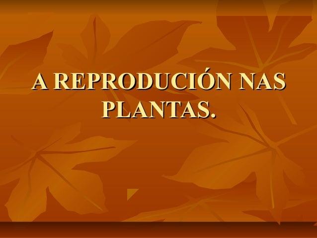 A REPRODUCIÓN NAS     PLANTAS.