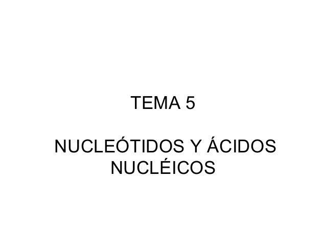 TEMA 5 NUCLEÓTIDOS Y ÁCIDOS NUCLÉICOS