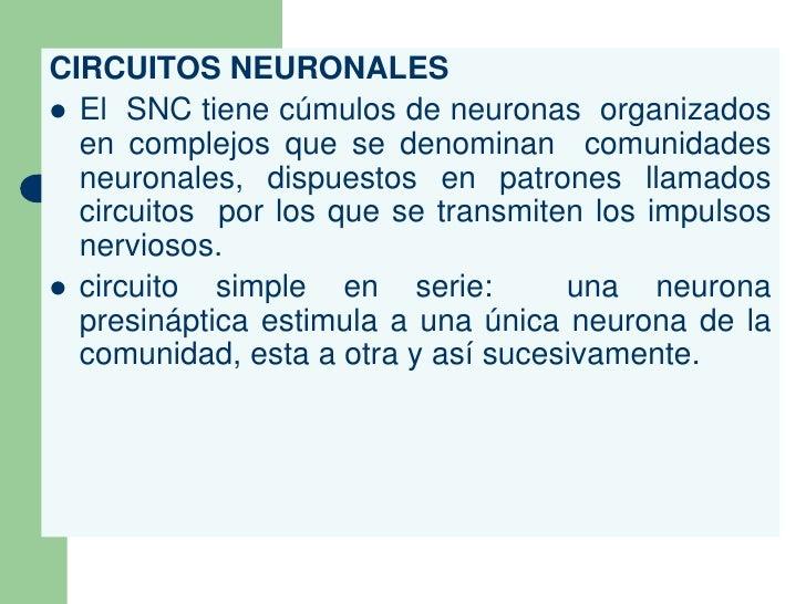 Circuito Significado : Tema sinapsis