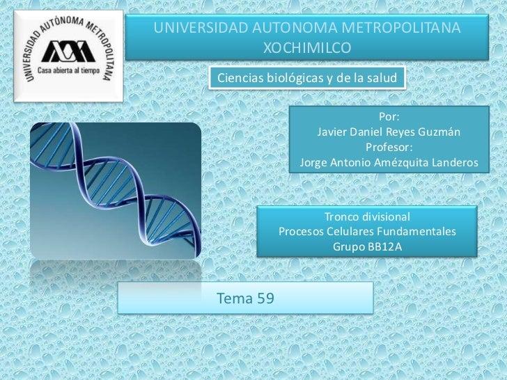 UNIVERSIDAD AUTONOMA METROPOLITANA             XOCHIMILCO       Ciencias biológicas y de la salud                         ...