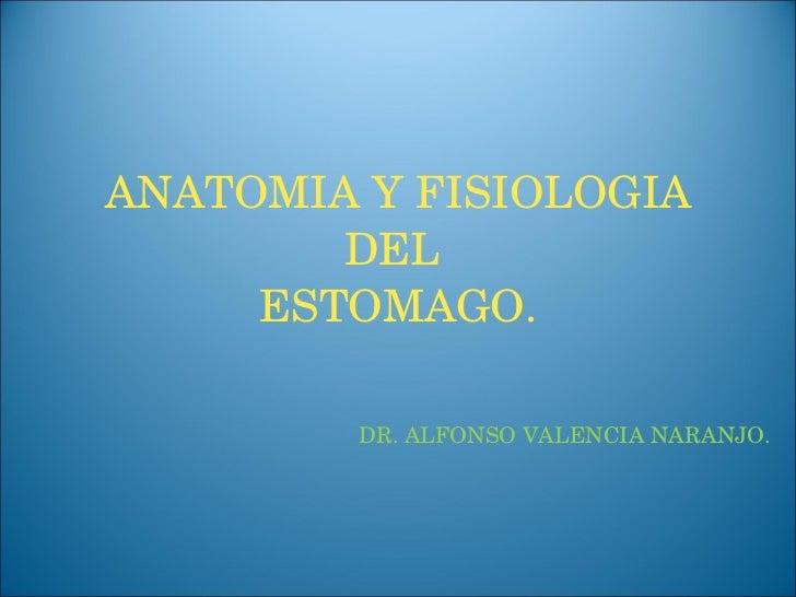 ANATOMIA Y FISIOLOGIA DEL  ESTOMAGO. DR. ALFONSO VALENCIA NARANJO.
