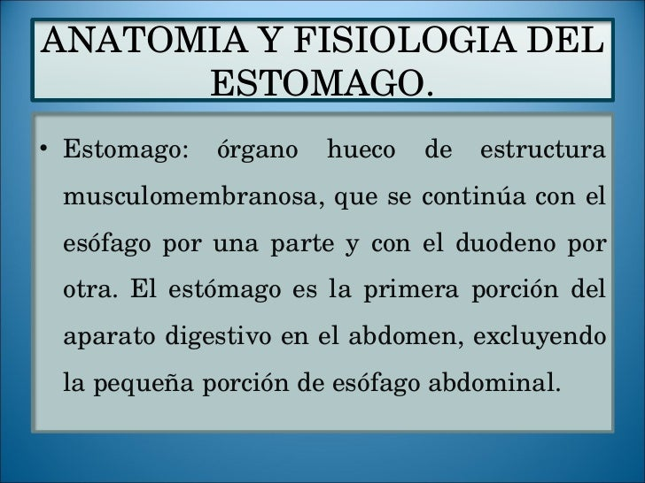 Tema 6. anatomia y fisiologia del estomago.