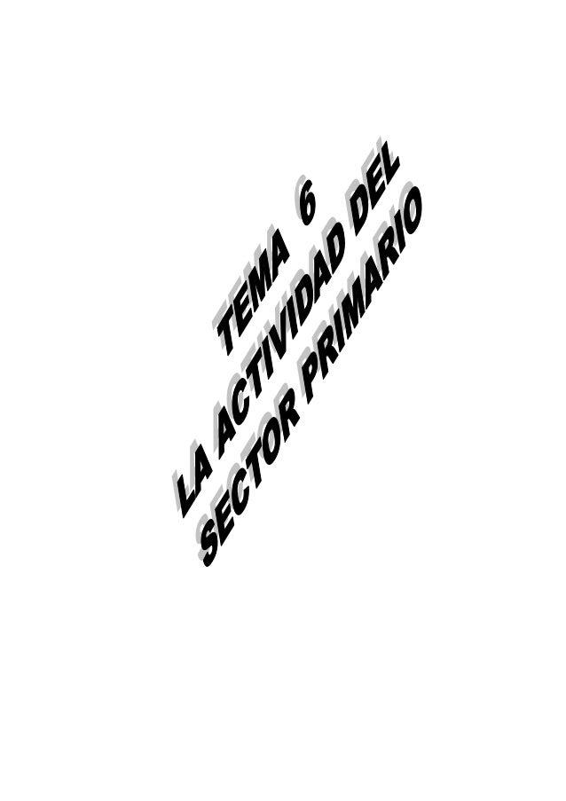 1-ACTIVIDAD AGRARIADENTRO DE LAS ACTIVIDADES ECONOMICAS VAMOS A AGRUPAR DICHAS ACTIVIDADES ENSECTORES. TRADICIONALMENTE, S...