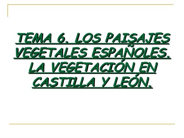TEMA 6. LOS PAISAJESTEMA 6. LOS PAISAJES VEGETALES ESPAÑOLES.VEGETALES ESPAÑOLES. LA VEGETACIÓN ENLA VEGETACIÓN EN CASTILL...