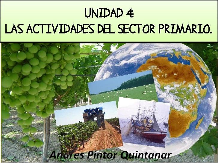 1. EL SECTOR PRIMARIO.    Es el conjunto de actividades que realizan las personas para obtener    recursos de la naturalez...