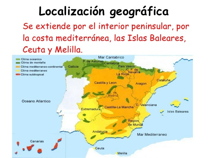 Tema 6 3 el clima mediterraneo for Clima mediterraneo de interior