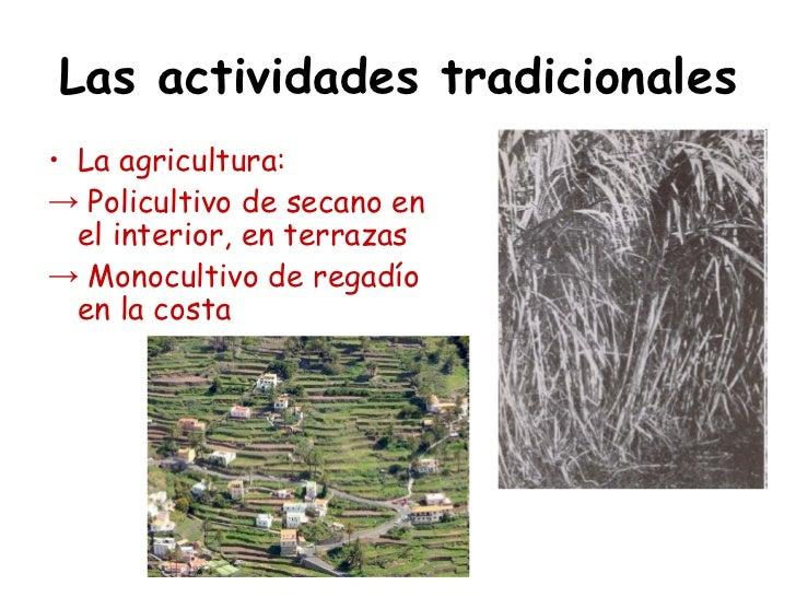 Las actividades tradicionales• La agricultura:→ Policultivo de secano en  el interior, en terrazas→ Monocultivo de regadío...