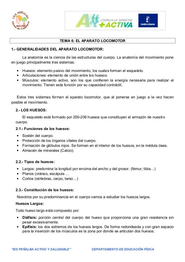 TEMA 6: EL APARATO LOCOMOTOR 1.- GENERALIDADES DEL APARATO LOCOMOTOR: La anatomía es la ciencia de las estructuras del cue...