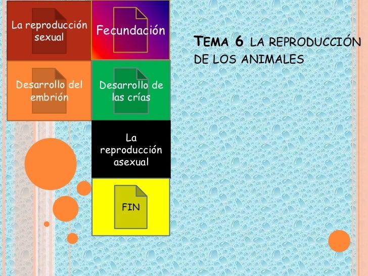 La reproducción                Fecundación     sexual                                 TEMA 6 LA REPRODUCCIÓN              ...