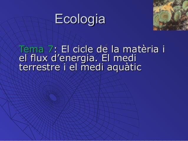 EcologiaEcologia Tema 7Tema 7: El cicle de la matèria i: El cicle de la matèria i el flux d'energia. El mediel flux d'ener...