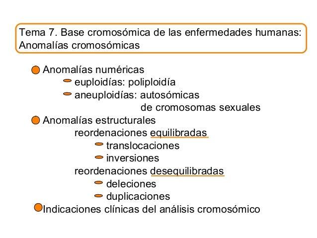 Tema 7. Base cromosómica de las enfermedades humanas: Anomalías cromosómicas Anomalías numéricas euploidías: poliploidía a...