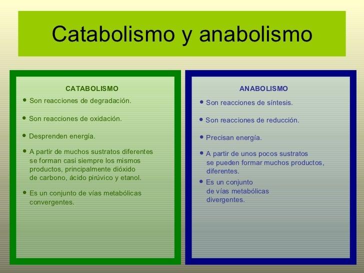 Metabolismo de pseudomonas