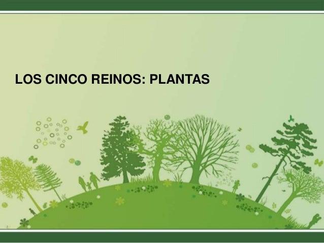 LOS CINCO REINOS: PLANTAS