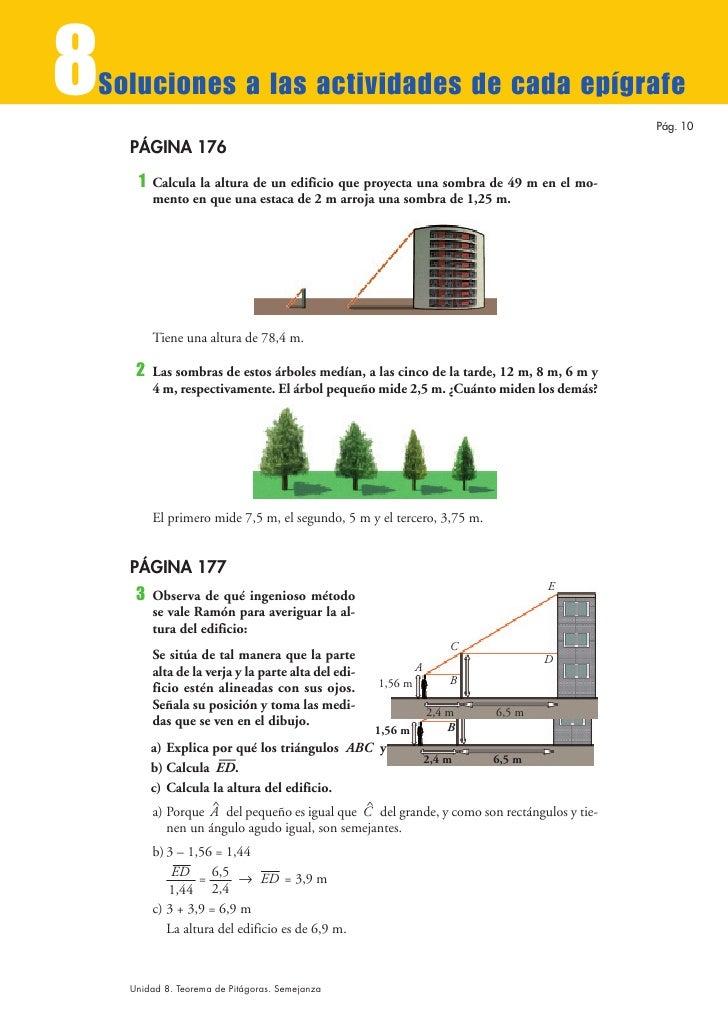 Tema 8 for Cuanto mide un arbol
