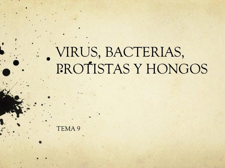 VIRUS, BACTERIAS, PROTISTAS Y HONGOS TEMA 9