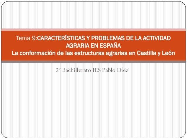 Tema 9:CARACTERÍSTICAS Y PROBLEMAS DE LA ACTIVIDAD                    AGRARIA EN ESPAÑALa conformación de las estructuras ...