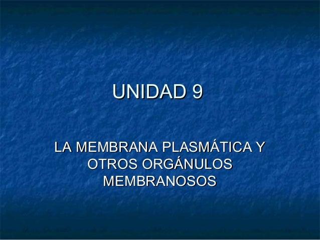UNIDAD 9 LA MEMBRANA PLASMÁTICA Y OTROS ORGÁNULOS MEMBRANOSOS