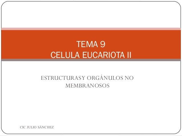 TEMA 9               CELULA EUCARIOTA II          ESTRUCTURAS Y ORGÁNULOS NO                 MEMBRANOSOSCIC JULIO SÁNCHEZ